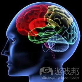 Brain from gamasutra.com
