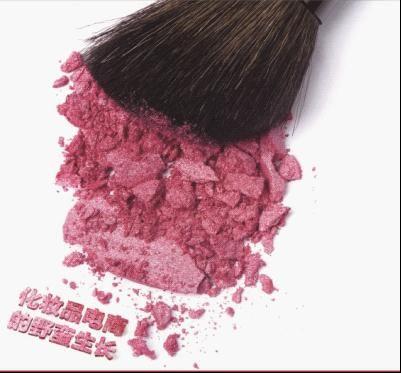 化妆品电商的野蛮生长