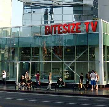 传统媒体的逆袭:电视行业为何迎来黄金时代?