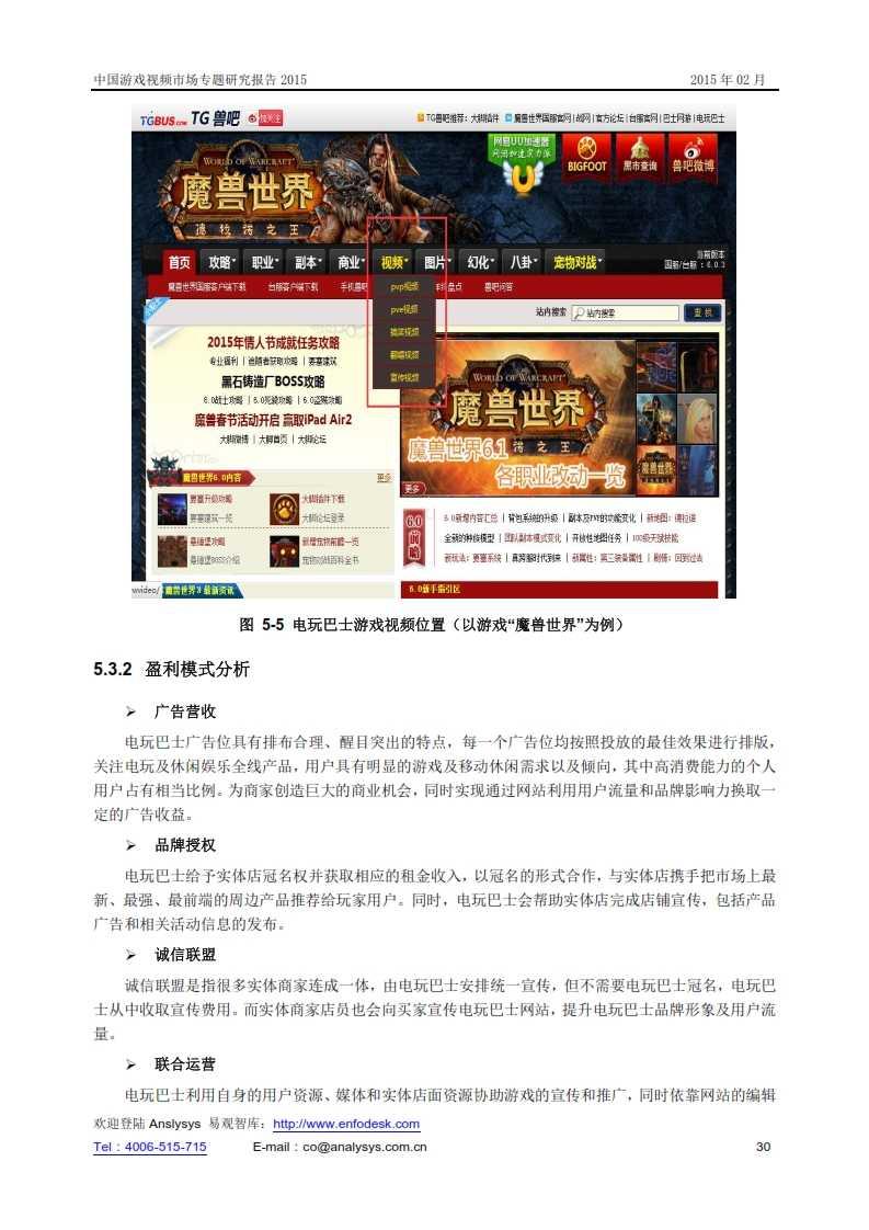 中国游戏视频市场专题研究报告2015_031