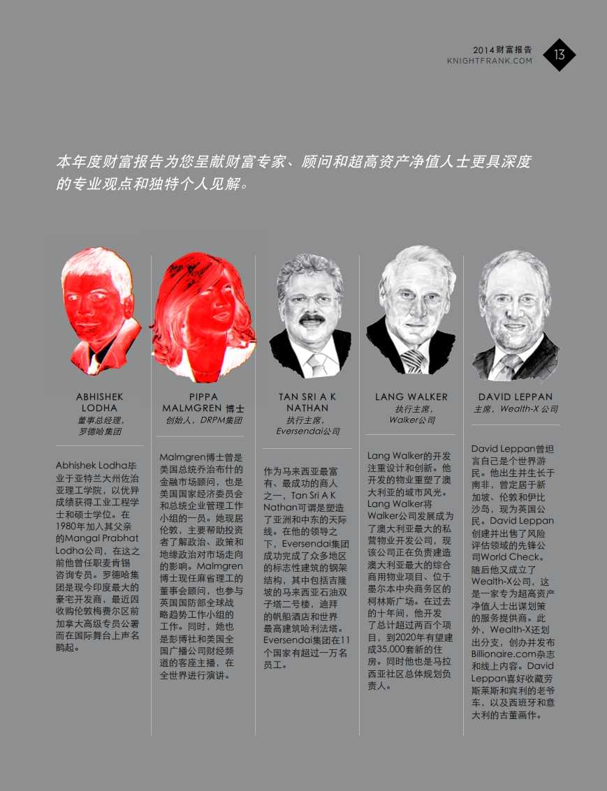 2014财富报告_013
