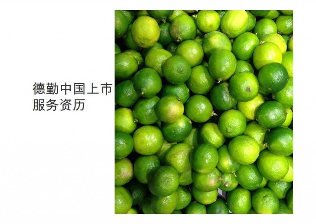 2015年Q1香港及中国大陆IPO市场_043