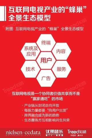 """大""""视""""所趋-2015中国互联网电视发展研究报告_000008"""