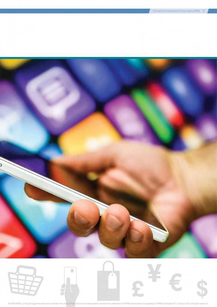 2015年中国的网购消费者_000005