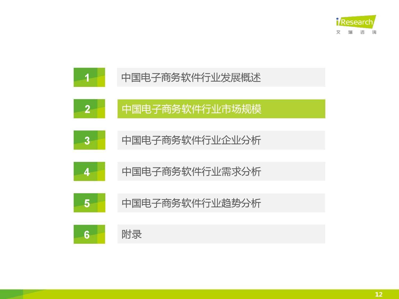 2015年中国电子商务软件行业研究报告_000012