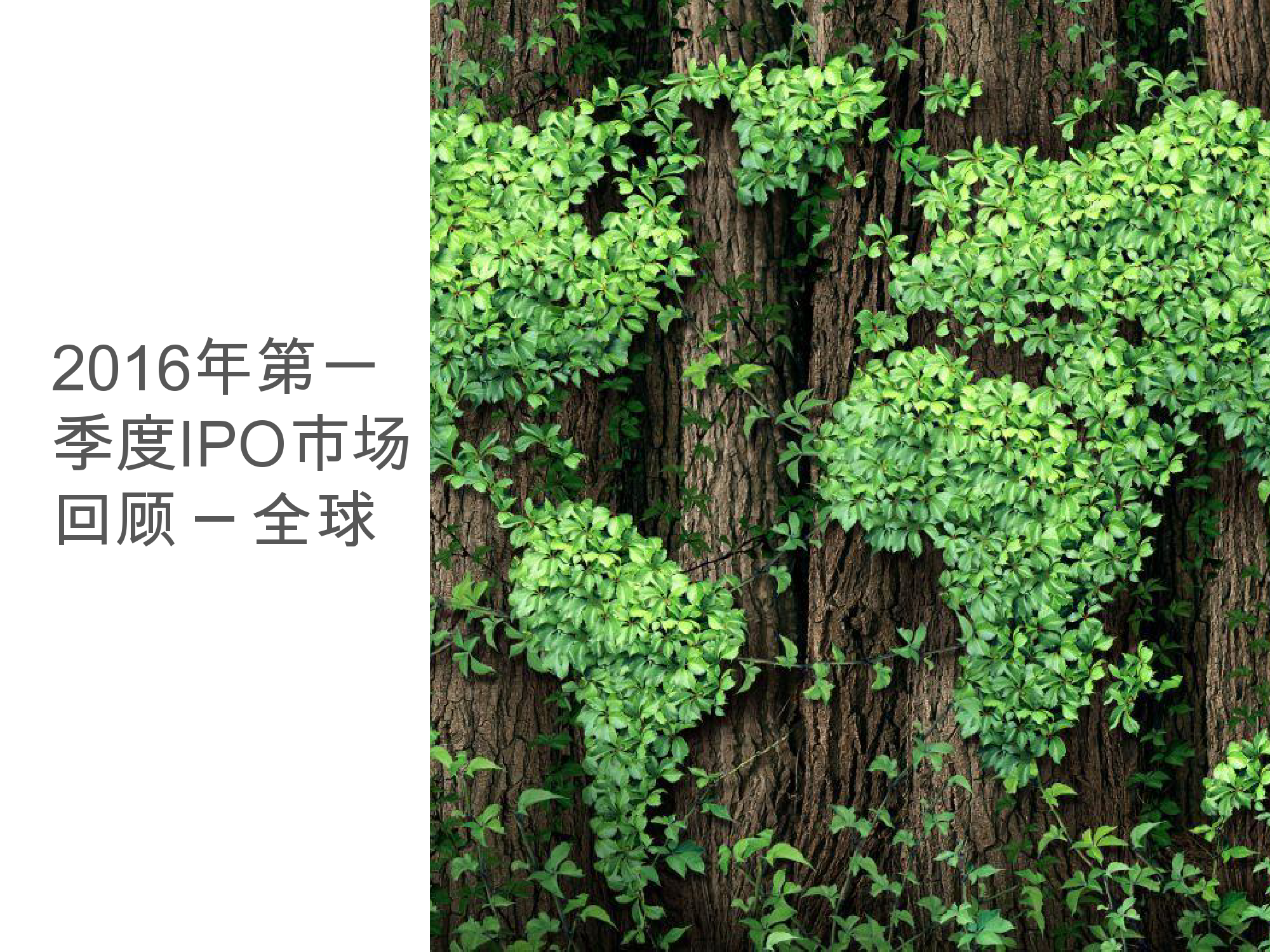 香港及中国大陆IPO市场2016年1季度_000026