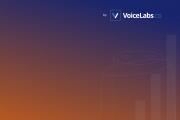 VoiceLabs:2017语音报告(附下载)