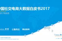 易观:2017中国社交电商大数据白皮书(附下载)