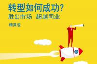 麦肯锡:2017年中国银行业CEO夏季刊