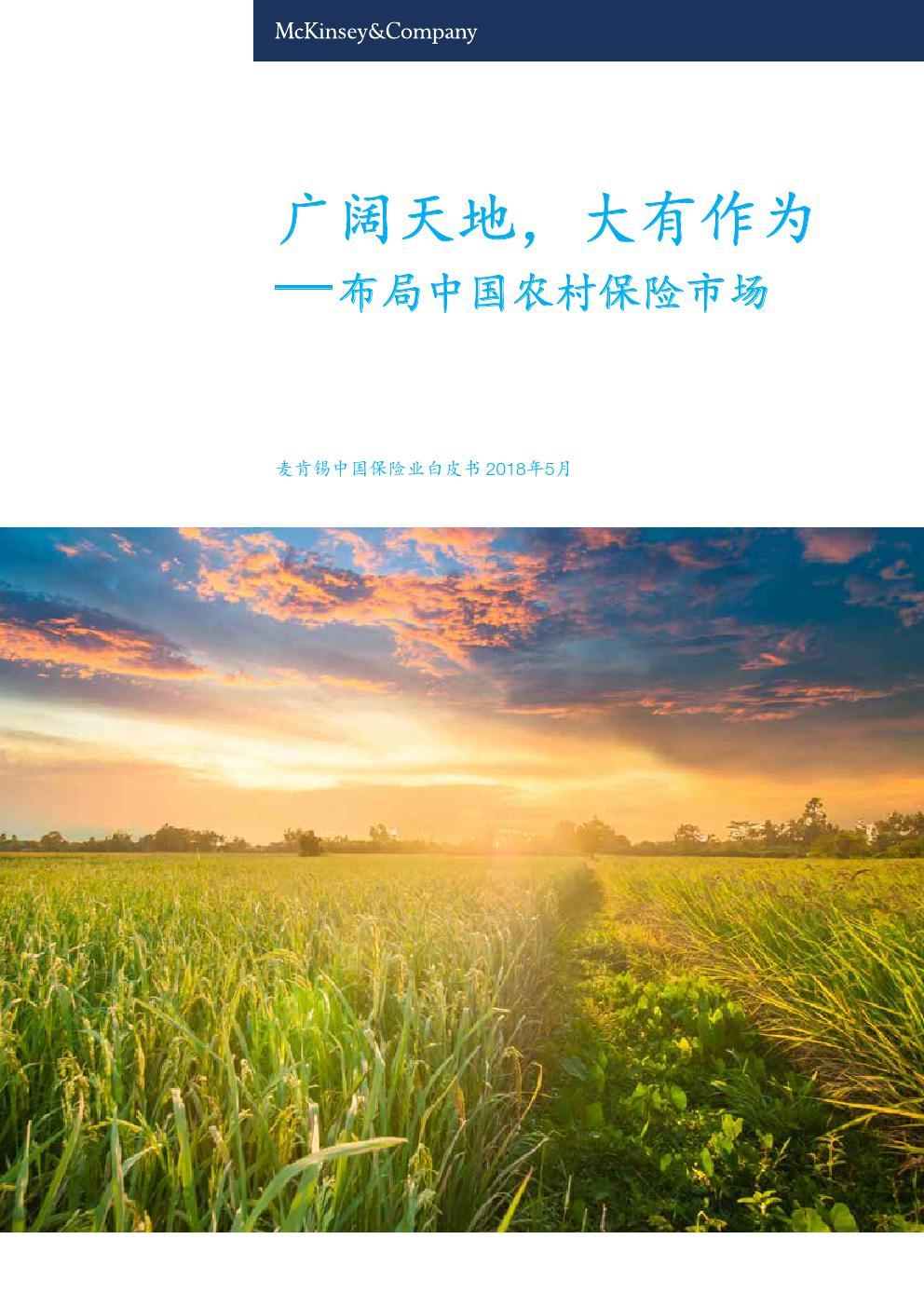 广阔天地,大有作为——布局中国农村保险市场