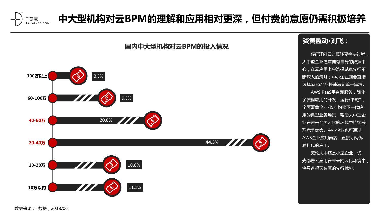 2018年中国云BPM市场用户研究报告