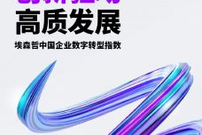 中国企业数字转型指数_000001.jpg