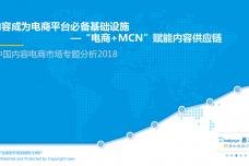 中国内容电商市场专题分析2018_000001.png