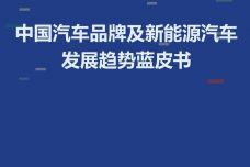 中国汽车品牌及新能源汽车发展趋势蓝皮书_000001.jpg