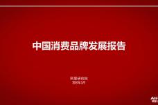 中国消费品牌发展报告_000001.png