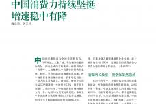 中国消费者持续坚挺_000001.png