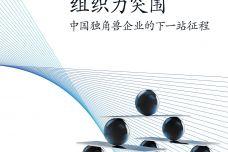 中国独角兽企业的下一站征程_000001.jpg