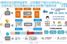 中国生鲜电商市场专题研究报告2015(简版)-1_000019.png