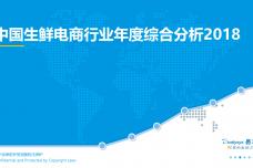 中国生鲜电商行业年度综合分析2018_000001.png