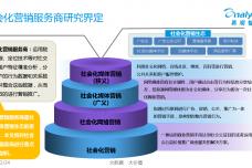中国社会化营销服务商市场业务流程变迁专题研究_000002.png