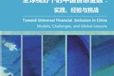 全球视野下的中国普惠金融:实践、经验与挑战.pdf_000001.png
