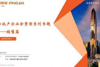 房地产行业企业全景图系列专题-—-销售篇_000001.jpg