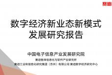 数字经济新业态新模式发展研究报告_000001.png