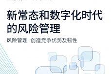 新常态和数字化时代的风险管理报告_000001.jpg