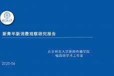 新青年新消费观察研究报告_000001.png