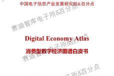 消费型数字经济图谱白皮书_000001.jpg