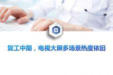 疫情下的用户大屏触媒洞察分析_000003.jpg