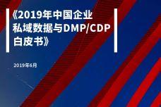 纷析智库:2019年中国企业私域数据与DMPCDP白皮书_000001-1.jpg