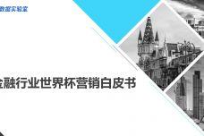 金融行业世界杯营销白皮书_000001.jpg