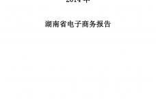 2014年湖南省电子商务报告_000001.png
