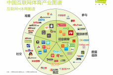 2015中国互联网-体育报告_000014.png