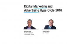 2016年数字营销和广告技术成熟度曲线_000001.png
