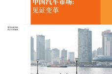 2017中国汽车市场蓝皮书_000001.png