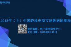 2017-2018中国电子商务发展报告_000001.jpg