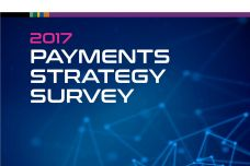 2017-Payments-Strategy-Survey_000.jpg
