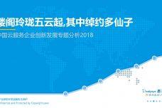 2018中国云服务企业创新发展专题分析_000001.jpg