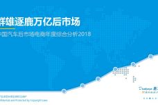 2018中国汽车后市场电商年度综合分析_000001.jpg