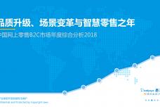 2018中国网上零售B2C市场年度综合分析_000001.png