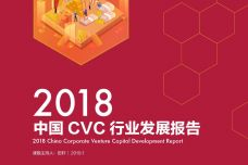 2018中国CVC行业发展报告_000001.jpg