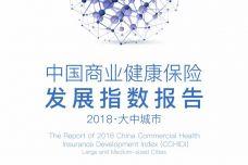 2018大中城市中国商业健康保险发展指数报告_000001.jpg