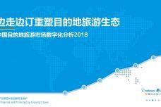 2018年中国目的地旅游市场数字化分析_000001.jpg
