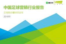 2018年中国足球营销行业报告_000001.jpg