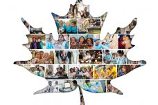 2018年加拿大移民年度报告_000001.jpg
