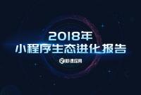 2018年小程序生态进化报告_000001.png