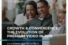2018年第4季度视频市场报告_000001.jpg