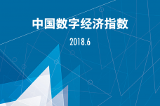 2018年6月中国数字经济指数报告_000001.png